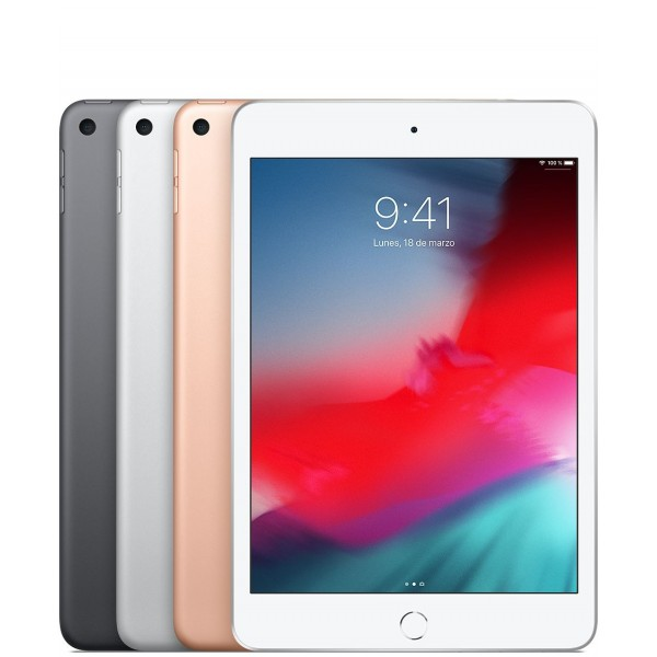 Apple Ipad Mini 5 Generación 256 GB + Wifi (Garan...