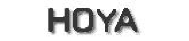 Hoya Filtros Polarizadores