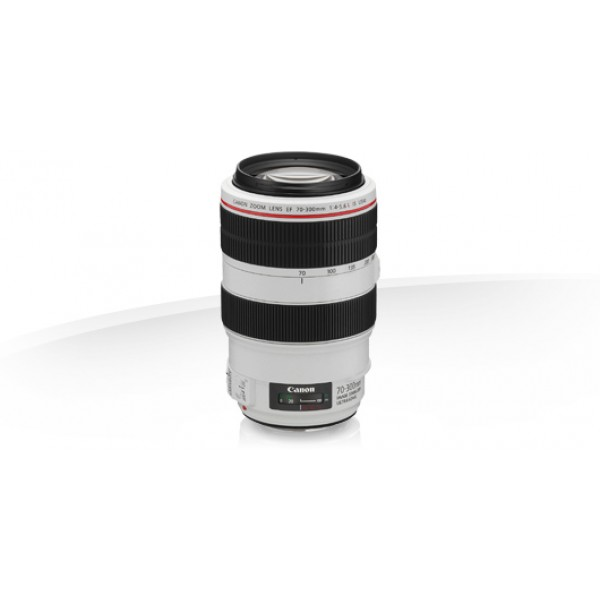 Objetivo Canon EF 70-300mm f/4-5.6L IS USM (Garant...